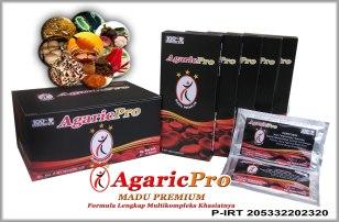 Obat Herbal Penyakit Asma Paling AMpuh